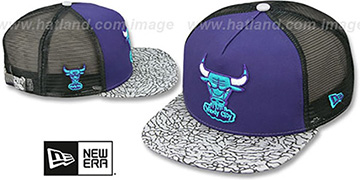 Bulls 'ELEPHANT-HOOK STRAPBACK' Purple-Black Hat by New Era