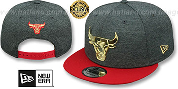 Bulls GOLD METAL-BADGE SNAPBACK Shadow Tech-Red Hat by New Era