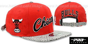 Bulls 'RETRO-SCRIPT STRAPBACK' Red-Elephant Hat by Pro Standard