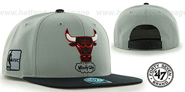 Bulls SURE-SHOT SNAPBACK Grey-Black Hat by Twins 47 Brand