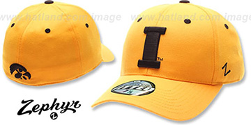 Iowa 'DH' Gold Fitted Hat by Zephyr
