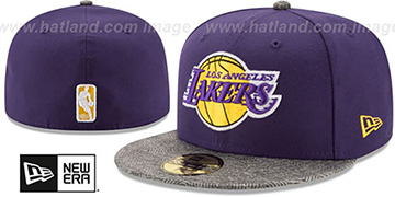 Lakers GRIPPING-VIZE Purple-Grey Fitted Hat by New Era