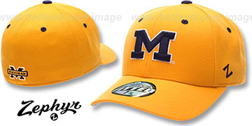 Michigan DH Fitted Hat by ZEPHYR - gold