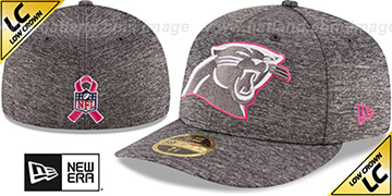 Panthers 2016 LOW-CROWN BCA Grey Fitted Hat by New Era