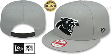 Panthers NFL TEAM-BASIC SNAPBACK Grey-Black Hat by New Era