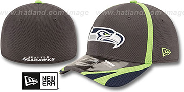 Seahawks 2014 NFL TRAINING FLEX Graphite Hat by New Era