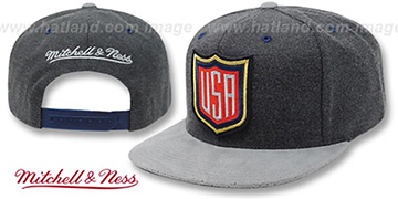 Team USA SHIELD SNAPBACK Grey-Grey Hat by Mitchell and Ness