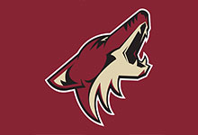 Arizona Coyotes NHL Hats