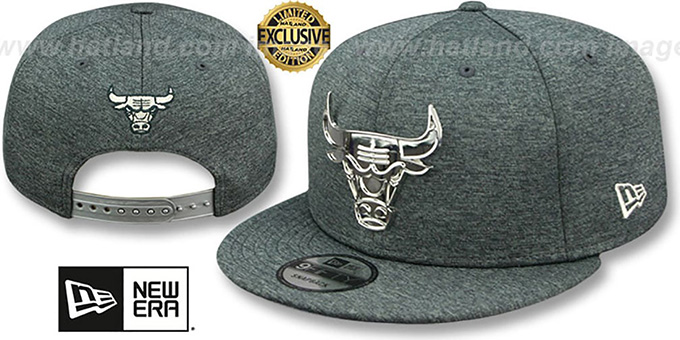 Bulls 'SILVER METAL-BADGE SNAPBACK' Shadow Tech Hat by New Era
