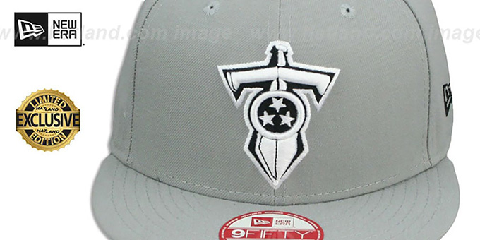 Titans 'NFL TEAM-BASIC SNAPBACK' Grey-Black Hat by New Era