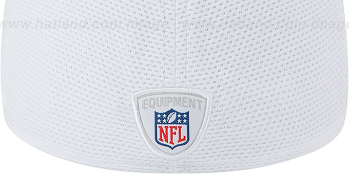 49ers '2013 NFL TRAINING FLEX' White Hat by New Era