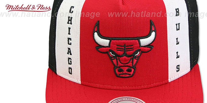 Bulls 'AJD SNAPBACK' Red-White-Black Adjustable Hat by Mitchell and Ness