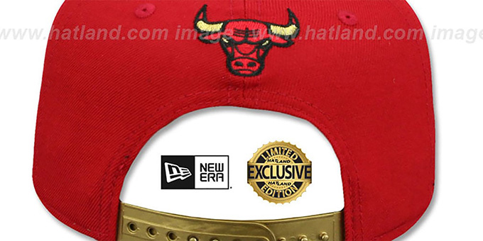 Bulls 'SWINGMAN SNAPBACK' Red-Gold Hat by New Era