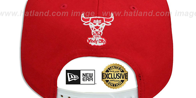 Bulls 'TEAM-BASIC TRACE SNAPBACK' Red-White Hat by New Era
