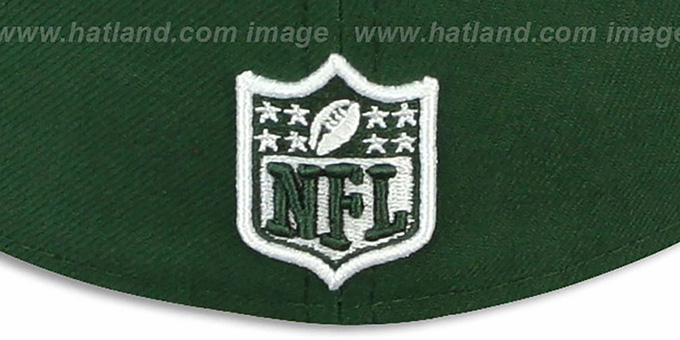 Jets 'NFL JERSEY-BASIC' Green-Grey Fitted Hat by New Era