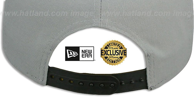 Kings 'TEAM-BASIC SNAPBACK' Grey-Black Hat by New Era