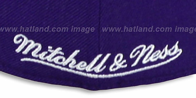 Raptors '2T XL-LOGO' Purple-Grey Fitted Hat by Mitchell & Ness