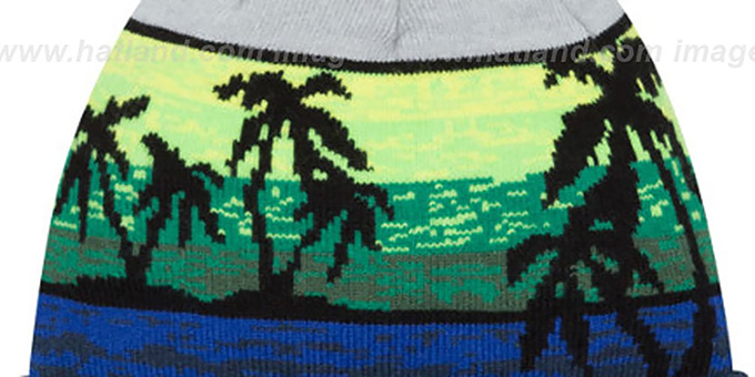 fa764c6674a Seattle Seahawks WINTER BEACHIN Knit Beanie Hat by New Era
