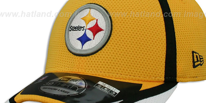 Steelers '2014 NFL TRAINING FLEX' Gold Hat by New Era