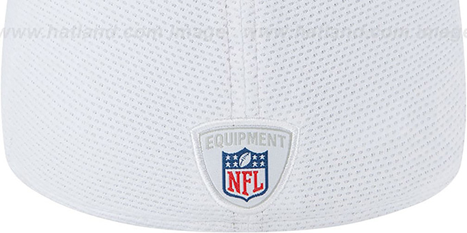 Texans '2013 NFL TRAINING FLEX' White Hat by New Era