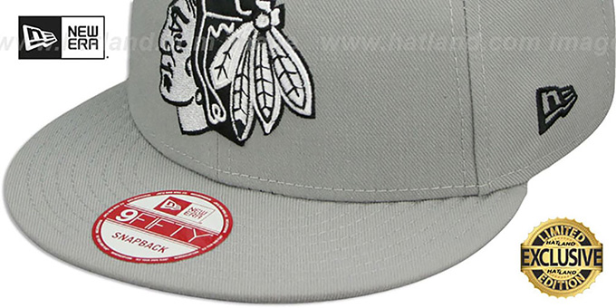 Blackhawks 'TEAM-BASIC SNAPBACK' Grey-Black Hat by New Era