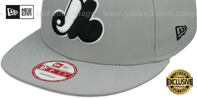 2e6038f7351 ... Expos COOP  TEAM-BASIC SNAPBACK  Grey-Black Hat by New Era