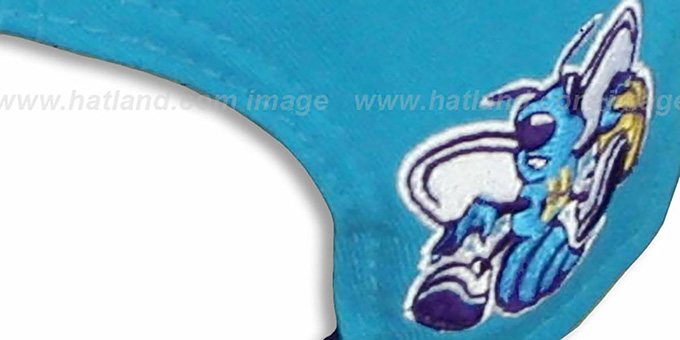 Hornets 'TEAM-HERO SNAPBACK' Teal Hat by New Era