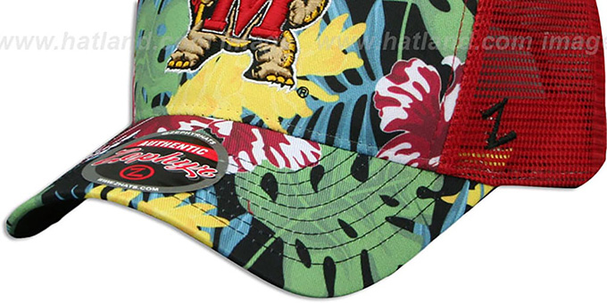 Maryland 'TROPICAL MESH SNAPBACK' Red-Green Hat by Zephyr