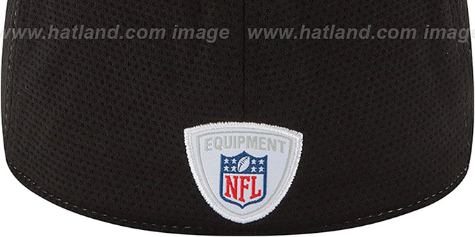 Steelers '2014 NFL TRAINING FLEX' White Hat by New Era